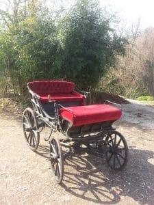 Passeggiate con il Pony o in Calesse - Pippo passeggiate con il pony o in calesse Passeggiate con il Pony o in Calesse 20150319 095637 225x300