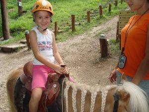 Passeggiate con il Pony o in Calesse