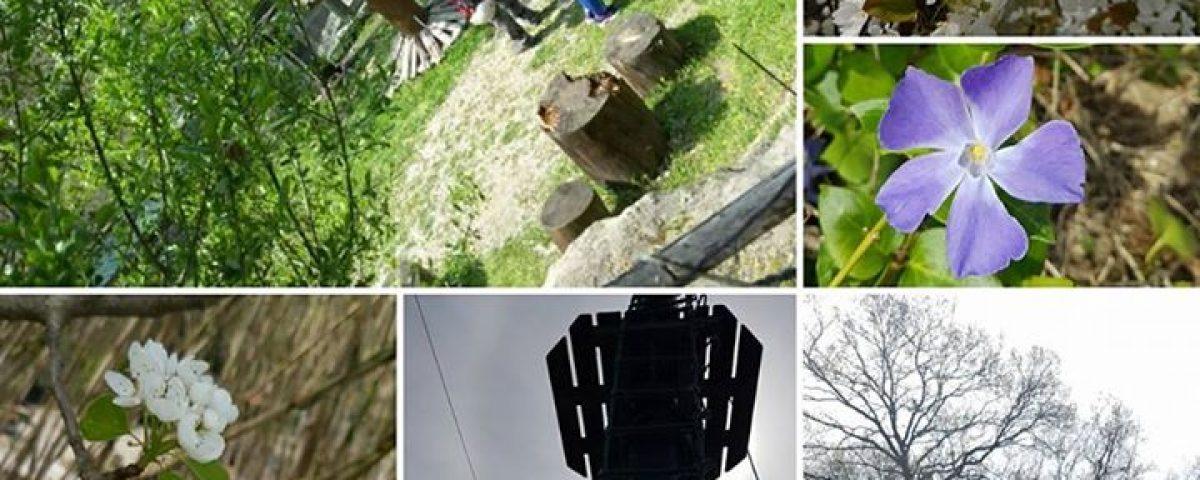 Il  #villaggiobushiadventures è una delle più belle avventure di primavera, ma s… 17458446 1906355272944265 5081934394330543698 n 1200x480