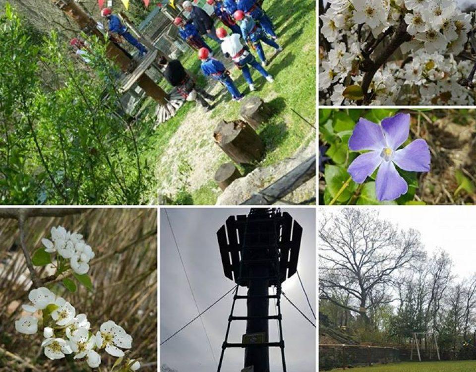 Il  #villaggiobushiadventures è una delle più belle avventure di primavera, ma s… 17458446 1906355272944265 5081934394330543698 n 960x750