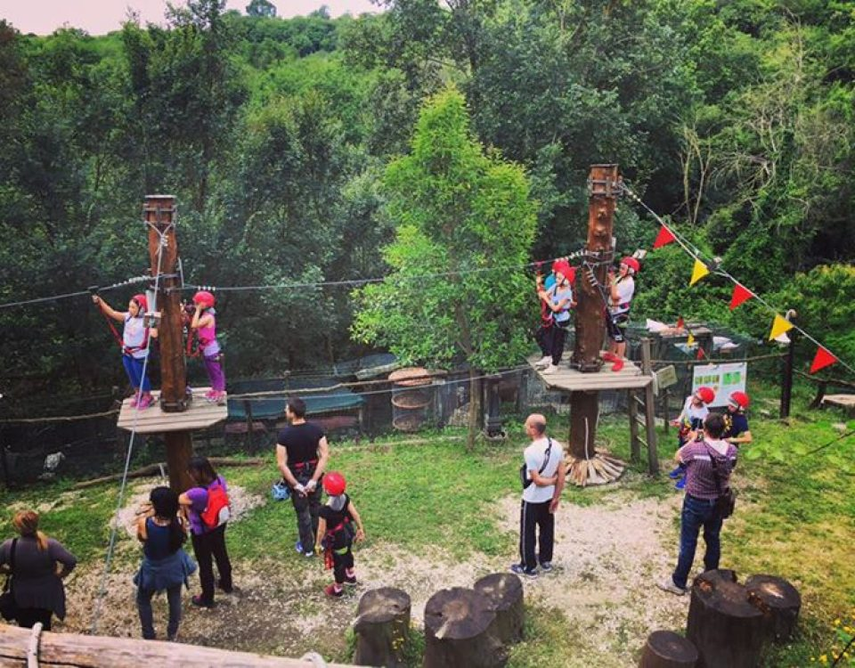 Buona domenica avventurieri!!!! Da tutto lo staff del Villaggio Bushi Adventures… 13315245 1752224515024009 6515133589036838576 n 960x750